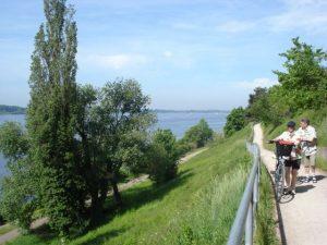 Elberadweg bei Wedel