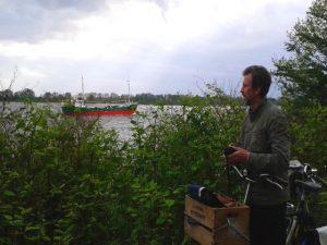 Greundiek auf der Elbe